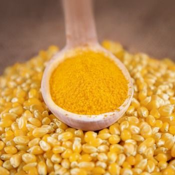 Interstarch. CORN GLUTEN MEAL
